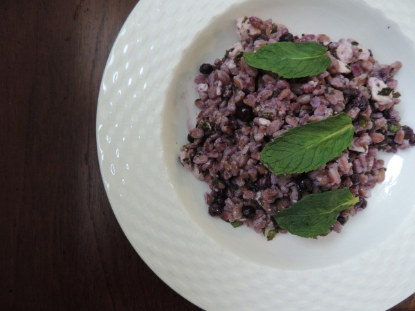 Wild_Blueberry_Farro_Salad