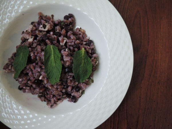 Farro_Wild_Blueberry_Salad