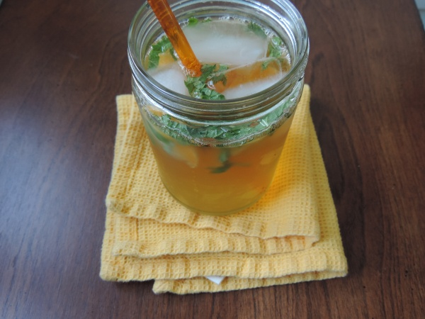 gingerbeer_mandarin_mint_refresher